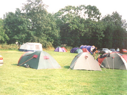 Spacious camp site Norfolk